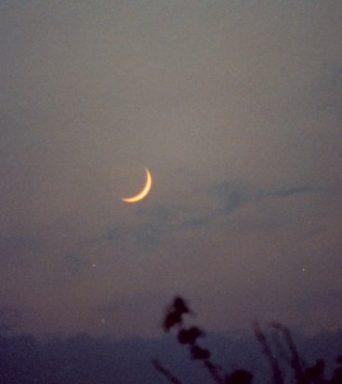 De wassende Maan: Eerste Kwartier